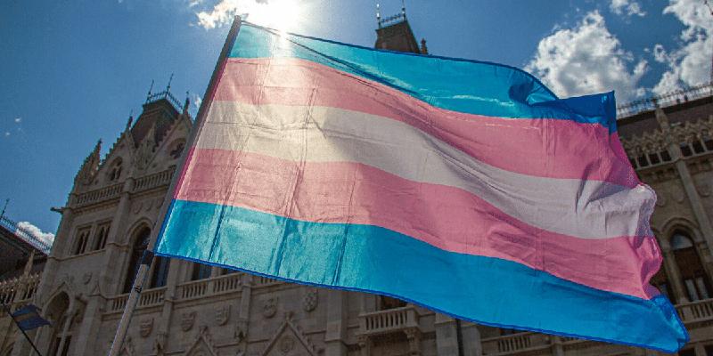La Declaración Conjunta de ILGA-Europe denuncia el retroceso de la  protección jurídica de los trans e intersex en Hungría | ILGA